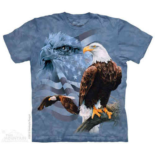 THE MOUNTAIN Adult T-Shirt - Faded Flags & Eagles