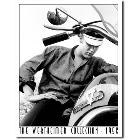 Blechschild - Wertheimer - Elvis on Bike, ca. 31,5 x 40,5 cm